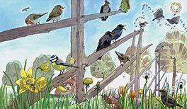 Kinderlied Alle Vögel sind schon da