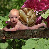 Baby Club Sauerland Mamas