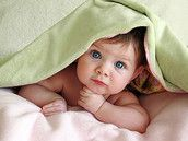 Baby Club Sommer Babys 2014