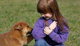 Hunde für Kinder