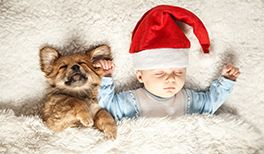Suche Lustige Weihnachtsbilder.Lustige Weihnachstbilder Babyclub De