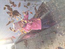Herbstfeeling im Dezember :)