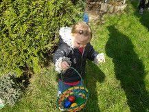Schon ein paar Eier gefunden :-)