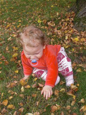 Mit gefallenen Blättern spielen