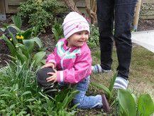 Sunny entdeckt den Garten