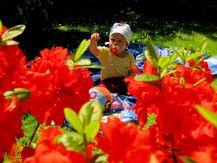 Farbenfroh ist dieser Sommer - und das gefällt mir!