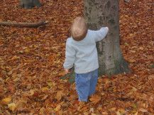 Hallo Baum - siehst Du mich?